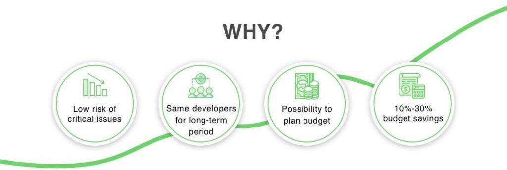 software development services, dedicated team